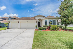Photo of 4026 Waterville Avenue, WESLEY CHAPEL, FL 33543 (MLS # U8093467)