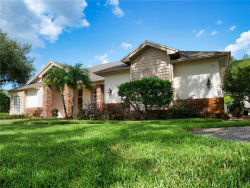 Photo of 335 Silver Moss Lane, TARPON SPRINGS, FL 34688 (MLS # U8097430)