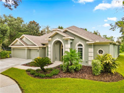 Photo of 15242 Kestrelrise Drive, LITHIA, FL 33547 (MLS # U8097946)