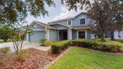 Photo of 14716 Heronglen Drive, LITHIA, FL 33547 (MLS # U8098257)