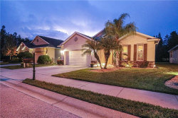 Photo of 1434 Halapa Way, TRINITY, FL 34655 (MLS # U8098374)