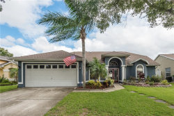 Photo of 731 Brittany Park Boulevard, TARPON SPRINGS, FL 34689 (MLS # U8098484)