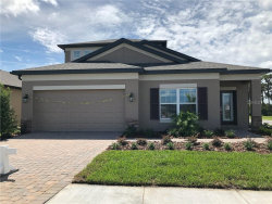 Photo of 19250 Leonard Road, LUTZ, FL 33558 (MLS # U8109508)