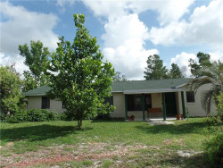 Photo of 1326 Don Carlos Trail, ENTERPRISE, FL 32725 (MLS # V4901163)