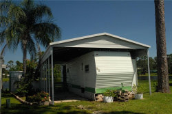 Photo of 83 Eagle Point S, OSTEEN, FL 32764 (MLS # V4901369)