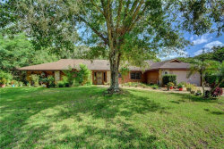 Photo of 1116 Heartwood Drive, DELAND, FL 32720 (MLS # V4902375)