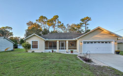 Photo of 312 Gardenia Avenue, DEBARY, FL 32713 (MLS # V4904379)