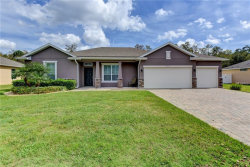 Photo of 405 Holly Fern Trail, DELAND, FL 32720 (MLS # V4905741)