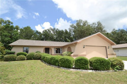 Photo of 3808 Spring Valley Drive, NEW PORT RICHEY, FL 34655 (MLS # W7801283)