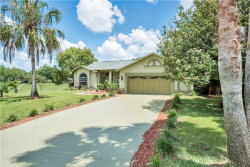 Photo of 14203 Nugent Circle, SPRING HILL, FL 34609 (MLS # W7801425)