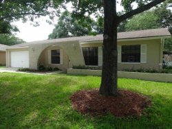 Photo of 4219 Briarberry Lane, TAMPA, FL 33624 (MLS # W7801465)