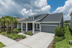 Photo of 14735 Caravan Avenue, ODESSA, FL 33556 (MLS # W7801911)