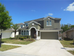 Photo of 9906 Bowden Mill Court, LAND O LAKES, FL 34638 (MLS # W7803027)