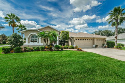 Photo of 1603 Stag Run Court, TRINITY, FL 34655 (MLS # W7803568)
