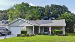 Photo of 6517 Ocean Pines Drive, SPRING HILL, FL 34606 (MLS # W7804983)