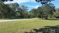 Photo of 8464 Orchard Way, SPRING HILL, FL 34608 (MLS # W7806899)