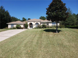 Photo of 11442 Warm Wind Way, WEEKI WACHEE, FL 34613 (MLS # W7806914)