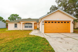 Photo of 11079 Thornberry Drive, SPRING HILL, FL 34608 (MLS # W7807601)