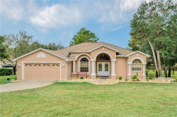 Photo of 11425 Warm Wind Way, WEEKI WACHEE, FL 34613 (MLS # W7807694)