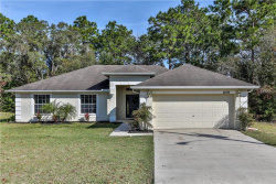 Photo of 10493 Red Coach Street, SPRING HILL, FL 34608 (MLS # W7808305)