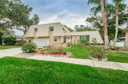 Photo of 916 Highview Drive, PALM HARBOR, FL 34683 (MLS # W7808411)