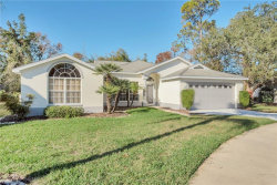 Photo of 14351 Spoon Court, HUDSON, FL 34667 (MLS # W7808536)