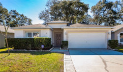 Photo of 30348 Birdhouse Drive, WESLEY CHAPEL, FL 33545 (MLS # W7808563)