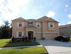 Photo of 13956 Bee Tree Court, HUDSON, FL 34669 (MLS # W7808691)
