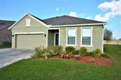 Photo of 23046 Wood Violet Court, LAND O LAKES, FL 34639 (MLS # W7809744)