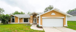 Photo of 231 Dan River Drive, SPRING HILL, FL 34606 (MLS # W7812302)