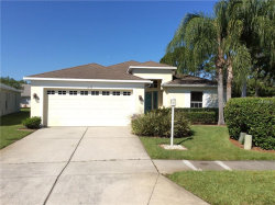 Photo of 1339 Winding Willow Drive, TRINITY, FL 34655 (MLS # W7812609)