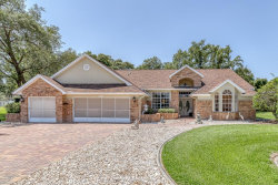 Photo of 18739 Bascomb Lane, HUDSON, FL 34667 (MLS # W7812641)