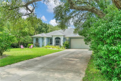 Photo of 9185 Bunting Road, WEEKI WACHEE, FL 34613 (MLS # W7812740)