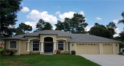 Photo of 3334 Josef Avenue, SPRING HILL, FL 34609 (MLS # W7812795)