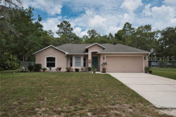 Photo of 12055 Osprey Avenue, WEEKI WACHEE, FL 34614 (MLS # W7813424)