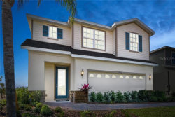 Photo of 11602 Gold Dust Court, RIVERVIEW, FL 33579 (MLS # W7814627)