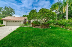 Photo of 2416 Huntington Boulevard, SAFETY HARBOR, FL 34695 (MLS # W7816612)