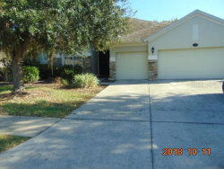 Photo of 16916 Ivy Lake Drive, ODESSA, FL 33556 (MLS # W7817291)