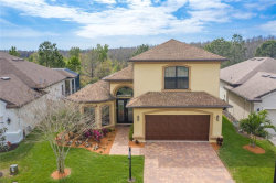 Photo of 1017 Ketzal Drive, TRINITY, FL 34655 (MLS # W7821308)