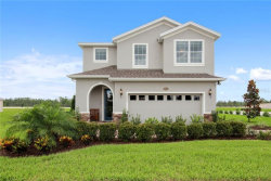 Photo of 12113 Blue Pacific Drive, RIVERVIEW, FL 33579 (MLS # W7821629)