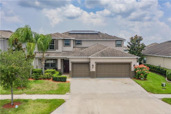 Photo of 3850 Tristram Loop, LAND O LAKES, FL 34638 (MLS # W7823445)