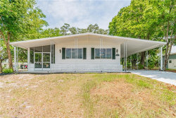 Photo of 8142 Little Tee Lane, BROOKSVILLE, FL 34613 (MLS # W7823492)