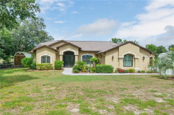 Photo of 5077 Lydia Court, SPRING HILL, FL 34608 (MLS # W7823674)