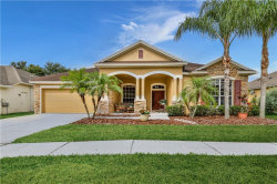 Photo of 7030 Derwent Glen Circle, LAND O LAKES, FL 34637 (MLS # W7823711)