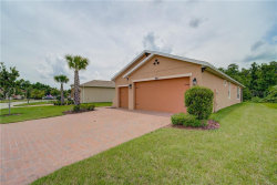 Photo of 700 Shady Canyon Way, POINCIANA, FL 34759 (MLS # W7823742)