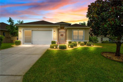 Photo of 10127 Tria Dr, WEEKI WACHEE, FL 34613 (MLS # W7824129)