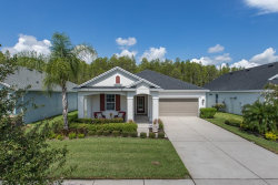 Photo of 14426 Trails Edge Boulevard, ODESSA, FL 33556 (MLS # W7825364)