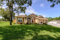 Photo of 10464 Calico Warbler Avenue, WEEKI WACHEE, FL 34613 (MLS # W7825450)