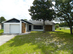 Photo of 3450 White Willow Way, SPRING HILL, FL 34606 (MLS # W7825605)