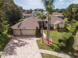 Photo of 1135 Wedge Way, SPRING HILL, FL 34608 (MLS # W7826903)